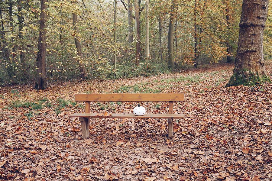 automne18